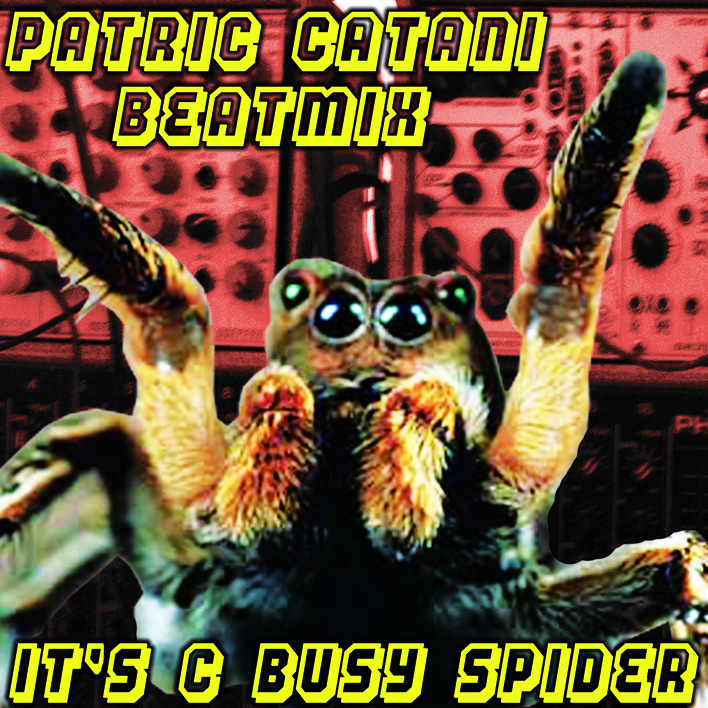 patric catani, it´s c busy spider mix